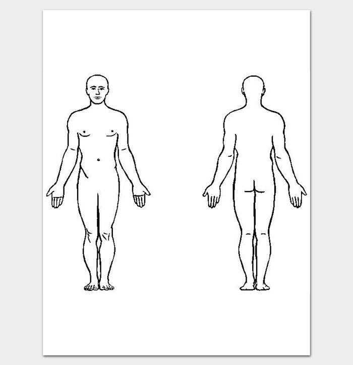 Human Body Front and Back Outline PDF Format