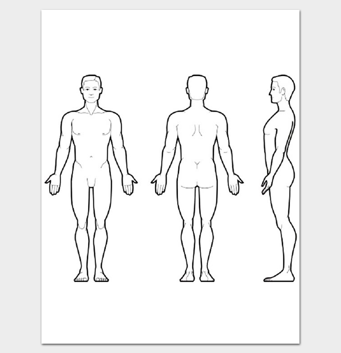 Human Body Outline Front and Back PDF