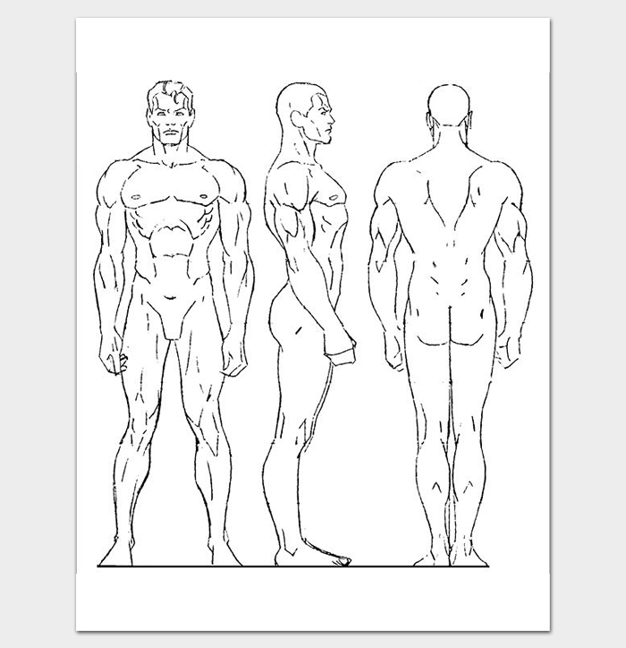 Male Human Body Outline Template