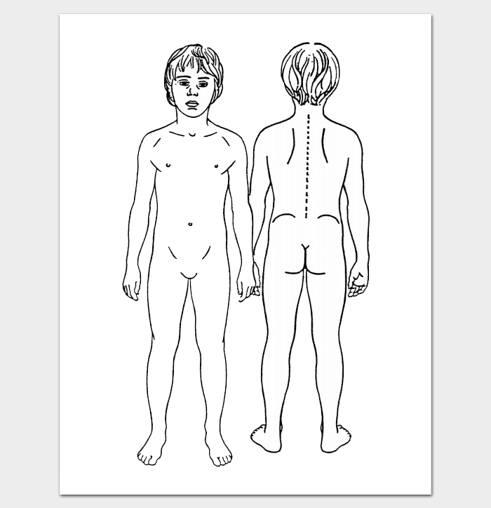 photograph regarding Printable Body Outline called System Determine Entrance and Again - 11+ Printable Worksheet