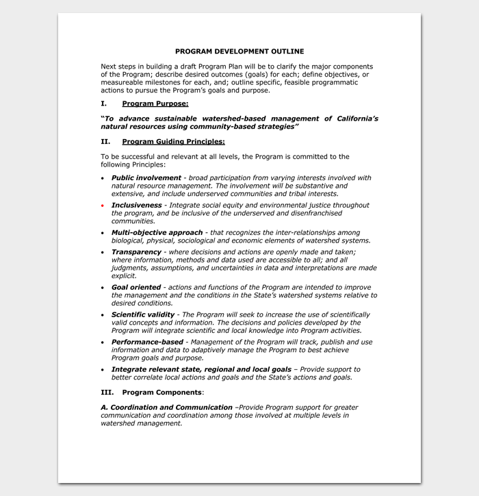 Program Development Outline PDF Format
